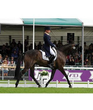 Michael Jung Makes Flying Start at Burghley
