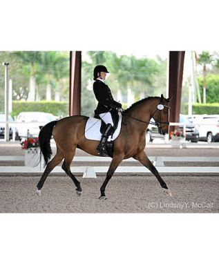 Star Studded Line-Up for USEF Para Dressage Nat'l Championship and Katy, Texas CPEDI3*
