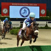 The WIHS Shetland Pony Steeplechase Championship Race is one of the most popular exhibitions! Photo © Shawn McMillen Photography