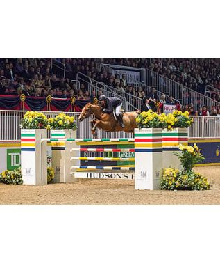 Top Riders Ready for International Show Jumping Competition at 2015 Royal Horse Show