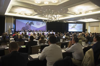 FEI General Assembly Concludes in Puerto Rico