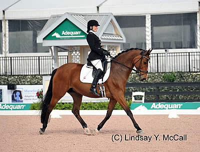 USA Para-Dressage Riders Dominate at Paralympic Qualifier
