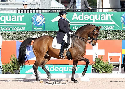 Shelly Francis and Doktor Earn Victory in AGDF 7 FEI Grand Prix Special CDI-W