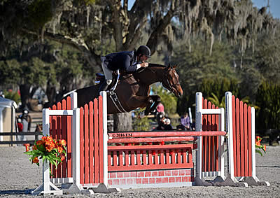 Hunter Riders Compete for a Blue-Ribbon Victory in Ocala Week V