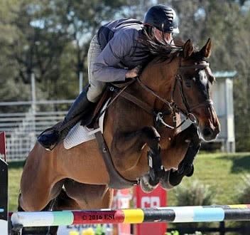 Week IV of the Ocala Winter Circuit Kicks Off with Big Competition