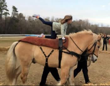 Trick Riding and Beginner/Intermediate Camp