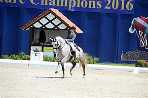 Gluch Tops US Field at CDIO-Y Hagen, Final Event of USEF Dressage Young Rider European Tour