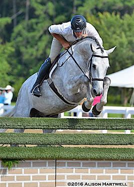 Tim Maddrix Pilots Shutterbug to the Win in the $2,500 USHJA National Hunter Derby