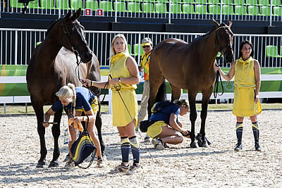 Swedes Steal the Show as Horse Inspection Gets Olympic Eventing Underway