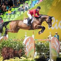 McLain Ward and Azur (Shannon Brinkman Photo)