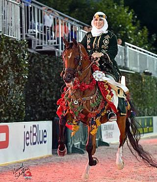 Arabian Breed Crowns US Open Champions to Start Central Park Horse Show