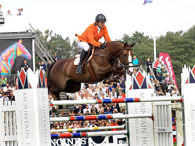 Full Veterinary Reports Now Available for SFN Horses Ahead of Sale