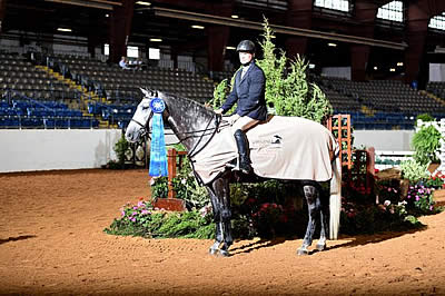 Virginia Hunter Championships Looks Forward to Next Year after Successful 2016 Horse Show
