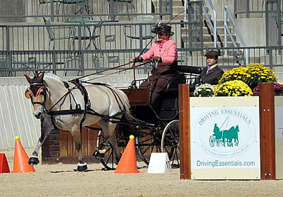 Berndl and Whaley Earn USEF Pony Driving National Championship Titles