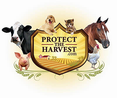 "Equus Film Festival Welcomes ""Protect the Harvest"" as Its 2016 Title Sponsor"