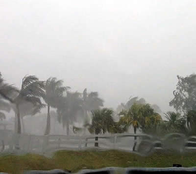 Palm Beach Equine Clinic Veterinarians On-Call and Available as Hurricane Matthew Approaches