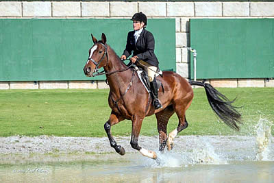 """Anita Crouse and Rickie Capture TIEC Field Hunter Championships at """"Festival of the Hunt"""""""