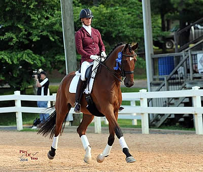 Dressage at Lexington Acquired by Virginia Dressage Association