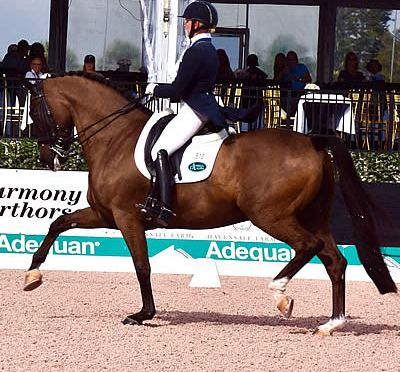 Katherine Bateson-Chandler and Alcazar Make Brilliant Comeback in Their First FEI Grand Prix of 2017