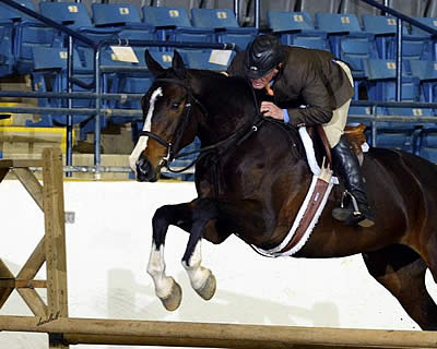 Stonewall Country Horse Show II Kicks Off at the Virginia Horse Center