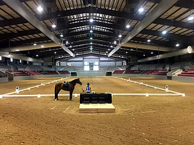 First Coast Classical Dressage Society Makes Jacksonville Equestrian Center Their Show Home