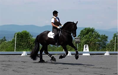 Use Leg Yielding to Help Pick Up the Correct Canter Lead, by Jane Savoie