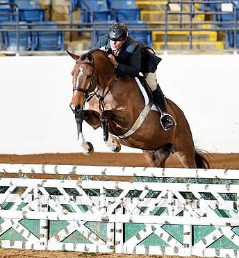 Top Hunters and Jumpers Showcased at Hollins Spring Welcome Horse Show