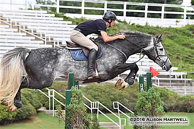 Register for the FREE USHJA Zone 4 Clinic with Tony Sgarlata
