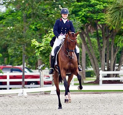 Judging Exams and PSG Win: Successful Summer Continues for Excel Dressage