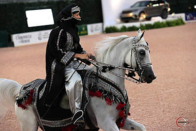 Central Park Horse Show Crowns US Open Arabian Champions