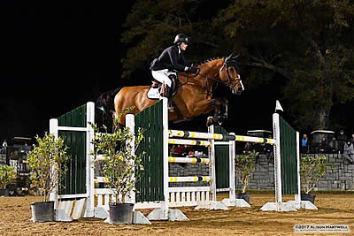 Julia Curtis and Isarus Win the $25,000 Voltaire Design Grand Prix