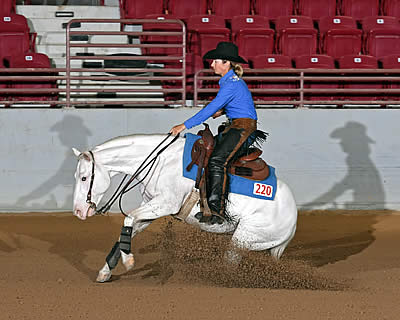 Reining Horses at Jacksonville Equestrian Center Compete for over $130,000 in Prizes