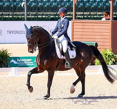 Dressage, Para-Dressage and Driving Test Events Boast Positive Response on First Day