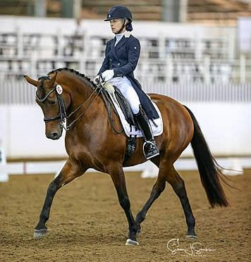 Houston Dressage Society Hosts CDI Small Tour Showdown