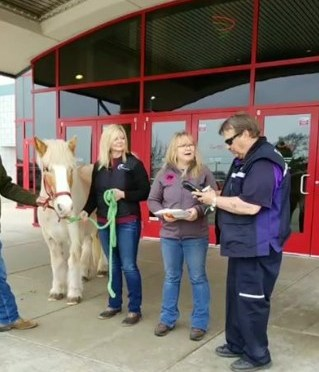 Real-Life Horse in Line at Charity Movie Screening Fills More UNBRIDLED Seats Than All Other Films Combined