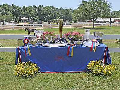 Charleston Summer Classics Designated a USEF Heritage Competition