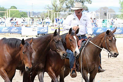 World Equine Expo to Feature Renowned Exhibitioners, Authors, Film and Art Festivals