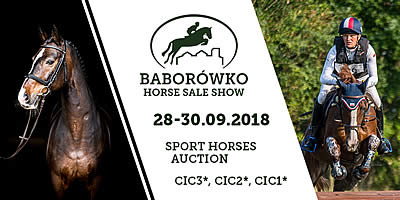 Live Online Streaming of Baborówko Horse Sale Show
