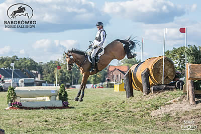Leaders Changing after Cross-Country at Baborówko Horse Sale Show