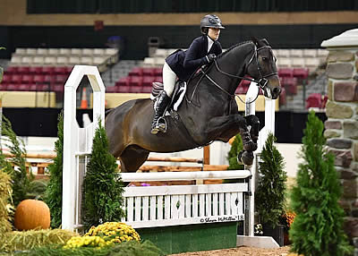 WIHS Regional Horse Show and USHJA Zone 3 Championship Conclude as Prelude to WIHS