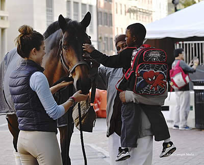 Washington International Horse Show Celebrates in the City