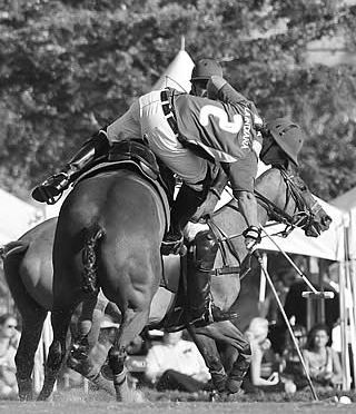 13th Annual Black and White Spider Awards Honors Equine Photographer Diana De Rosa