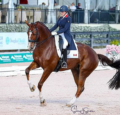 Brittany Fraser-Beaulieu and All In Sparkle with Win in the FEI Grand Prix CDI5*