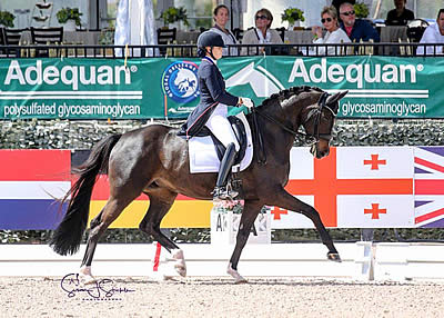 Holzer and Valentine Conclude AGDF Week 5 with Win in FEI Intermediate I Freestyle CDI3*