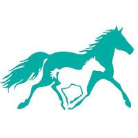Kentucky Horse Park Announces Spring Opener Horse Show