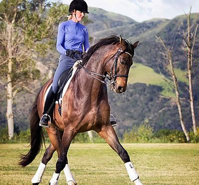 Dressage Coach and Olympian Charlotte Bredahl Appears Because of Horses Podcast Mar. 29