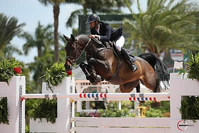 Nayel Nassar's Hot Streak Continues with Win in $134,000 WEF Challenge Cup CSI 5*
