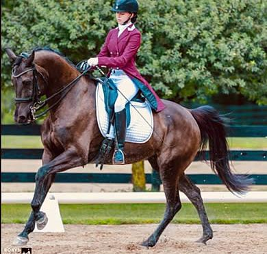 Excel Dressage and Stal Hoog Celebrate Working Student Success at First Junior CDI