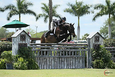 El Primero Is Number One Again with Victoria Colvin in $50k USHJA International Hunter Derby