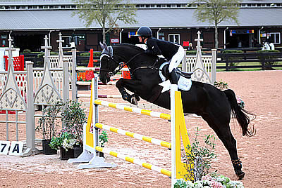 Genevieve Edwards Tops $15k 1.35-1.40m Jumper Classic & $5k 1.35m Welcome Stake at Tryon